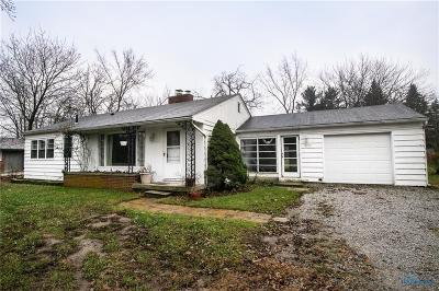 Sylvania Single Family Home For Sale: 8215 Erie Street