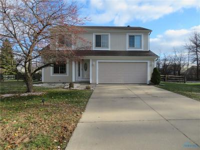 Perrysburg Single Family Home For Sale: 1571 Indian Creek Drive