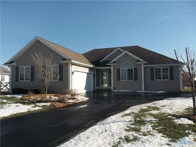 Perrysburg Single Family Home Contingent: 3165 Steeple Chase Lane