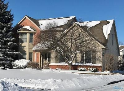Holland Single Family Home For Sale: 7806 Empire Court Court