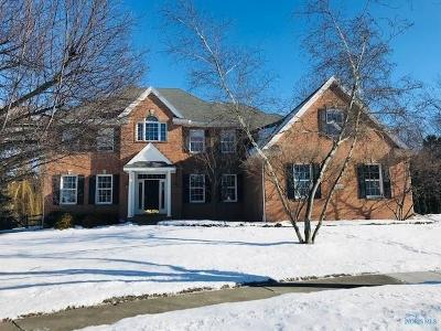 Sylvania OH Single Family Home For Sale: $579,000