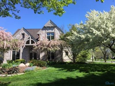 Sylvania Single Family Home For Sale: 8664 Slate Ridge Court