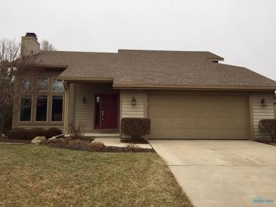 Maumee Single Family Home Contingent: 6602 Foxtail