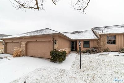 Perrysburg Condo/Townhouse For Sale: 9864 Ford Road