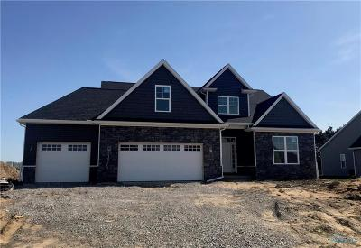 Whitehouse Single Family Home For Sale: 9559 Rockingham Drive