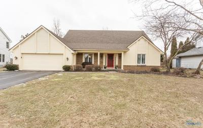Holland Single Family Home Contingent: 7331 Sawmill Run Drive