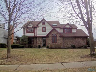 Sylvania Single Family Home For Sale: 7603 Kings Run Road