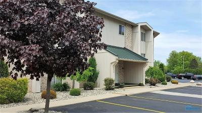 Maumee Condo/Townhouse Contingent: 6640 Salisbury Road #310