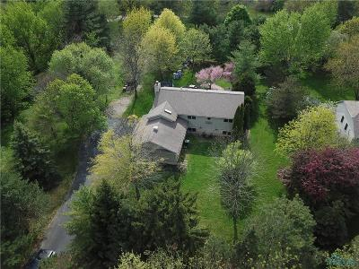 Perrysburg Single Family Home For Sale: 30417 Bates Road