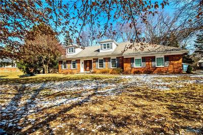 Maumee Single Family Home Contingent: 6120 S Chanticleer Drive