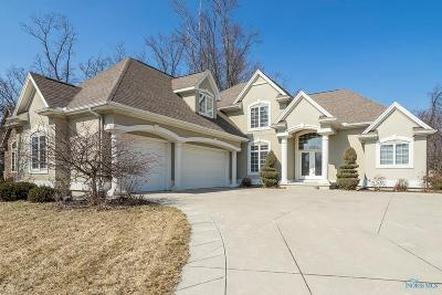 Maumee Single Family Home For Sale: 3644 Boulder Ridge Drive