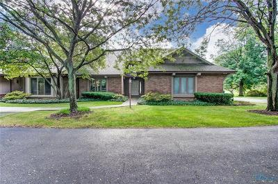 Perrysburg Condo/Townhouse For Sale: 10225 Ford Road