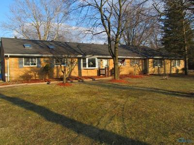 Holland Single Family Home For Sale: 953 Raymill Road