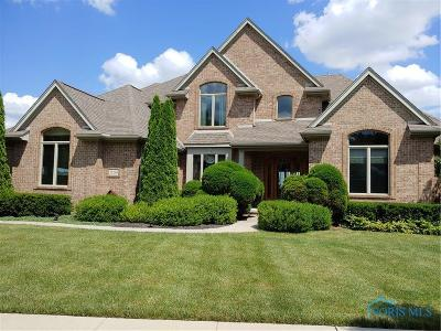 Perrysburg Single Family Home For Sale: 25230 River View Place
