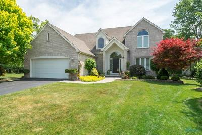 Toledo Single Family Home Contingent: 7511 Kings Hollow Court