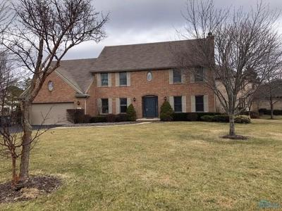 Perrysburg Single Family Home For Sale: 343 Valley Lane