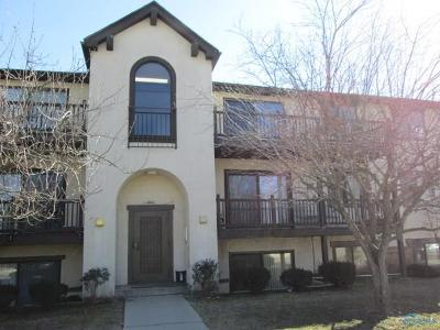 Toledo OH Condo/Townhouse For Sale: $36,000