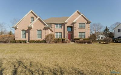 Maumee Single Family Home For Sale: 8042 S Bridge Way