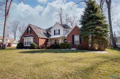 Holland Single Family Home For Sale: 7625 Baldwin Court