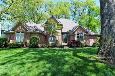 Holland Single Family Home For Sale: 9042 Oak Valley Road