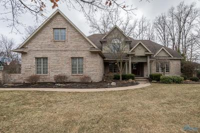 Sylvania Single Family Home Contingent: 2447 Waterford Village Drive