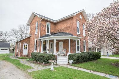 Holland Single Family Home For Sale: 7117 Hall Street