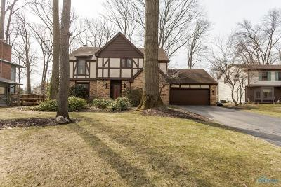 Holland Single Family Home For Sale: 7349 Crosscut Road