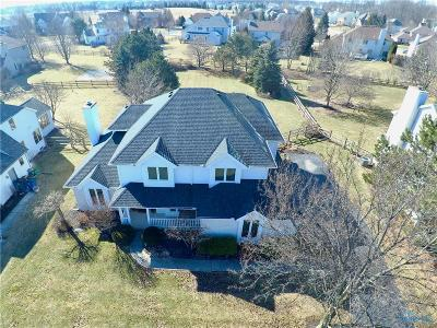 Perrysburg Single Family Home Contingent: 13877 Eckel Junction Road