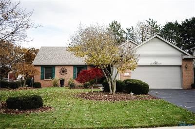 Holland Single Family Home For Sale: 77 Hidden Meadow Drive