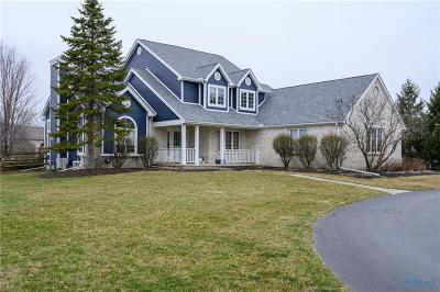 Perrysburg Single Family Home For Sale: 10311 Ford Road