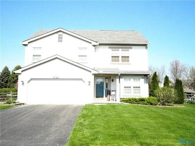 Holland Single Family Home Contingent: 7120 Wexford Hill Lane
