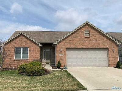 Perrysburg Single Family Home Contingent: 10886 Waterview Drive
