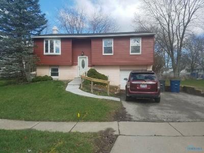 Toledo Single Family Home For Sale: 3734 Loch Lomond Avenue