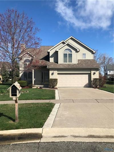 Perrysburg Single Family Home For Sale: 29743 Brookview Ct Court