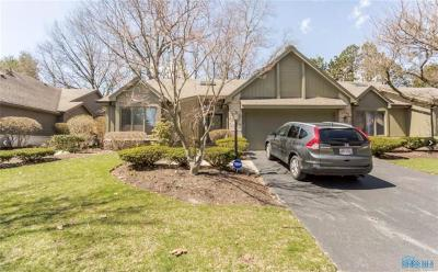 Toledo Condo/Townhouse For Sale: 2725 Pine Knoll Drive #2725