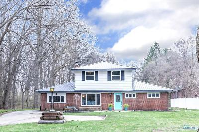 Sylvania Single Family Home For Sale: 2910 Wilford Drive