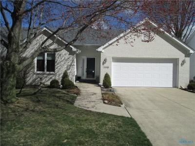Sylvania Single Family Home Contingent: 7430 Wicklow Woods Drive
