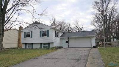 Sylvania Single Family Home For Sale: 4635 Wickford Drive