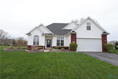 Waterville Single Family Home Contingent: 7942 Dana Rae Drive
