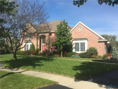 Sylvania Single Family Home For Sale: 6059 Needle Rock Court