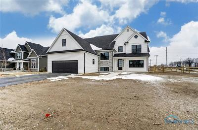 Perrysburg Single Family Home For Sale: 100 Howald Farm Court