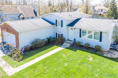 Perrysburg Single Family Home For Sale: 28543 White Road
