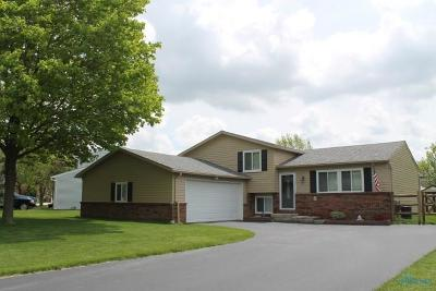 Perrysburg Single Family Home For Sale: 339 Birchdale Road