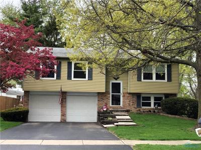 Perrysburg Single Family Home For Sale: 160 Partridge Lane