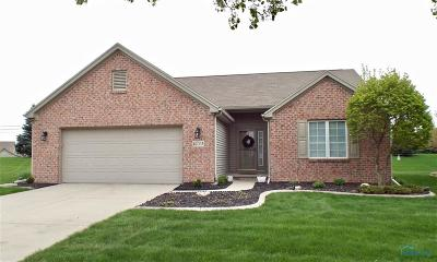 Perrysburg Condo/Townhouse For Sale: 10033 S Shannon Hills Drive