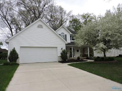 Holland Single Family Home For Sale: 7319 Yunker Lane