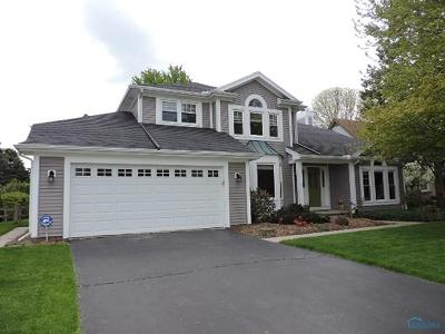 Holland Single Family Home Contingent: 7331 Red Maple Drive