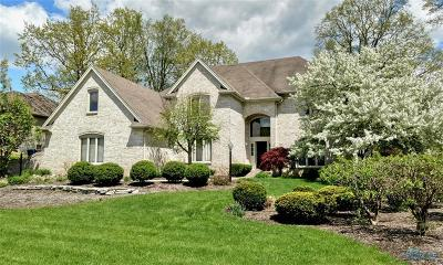 Holland Single Family Home For Sale: 603 Laguna Point