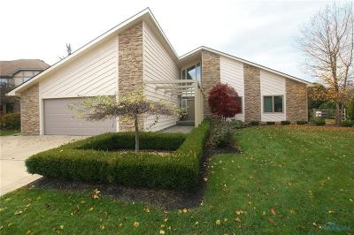 Sylvania OH Single Family Home Contingent: $343,000