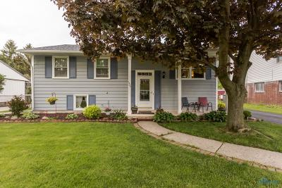 Maumee Single Family Home For Sale: 1322 Michigan Avenue